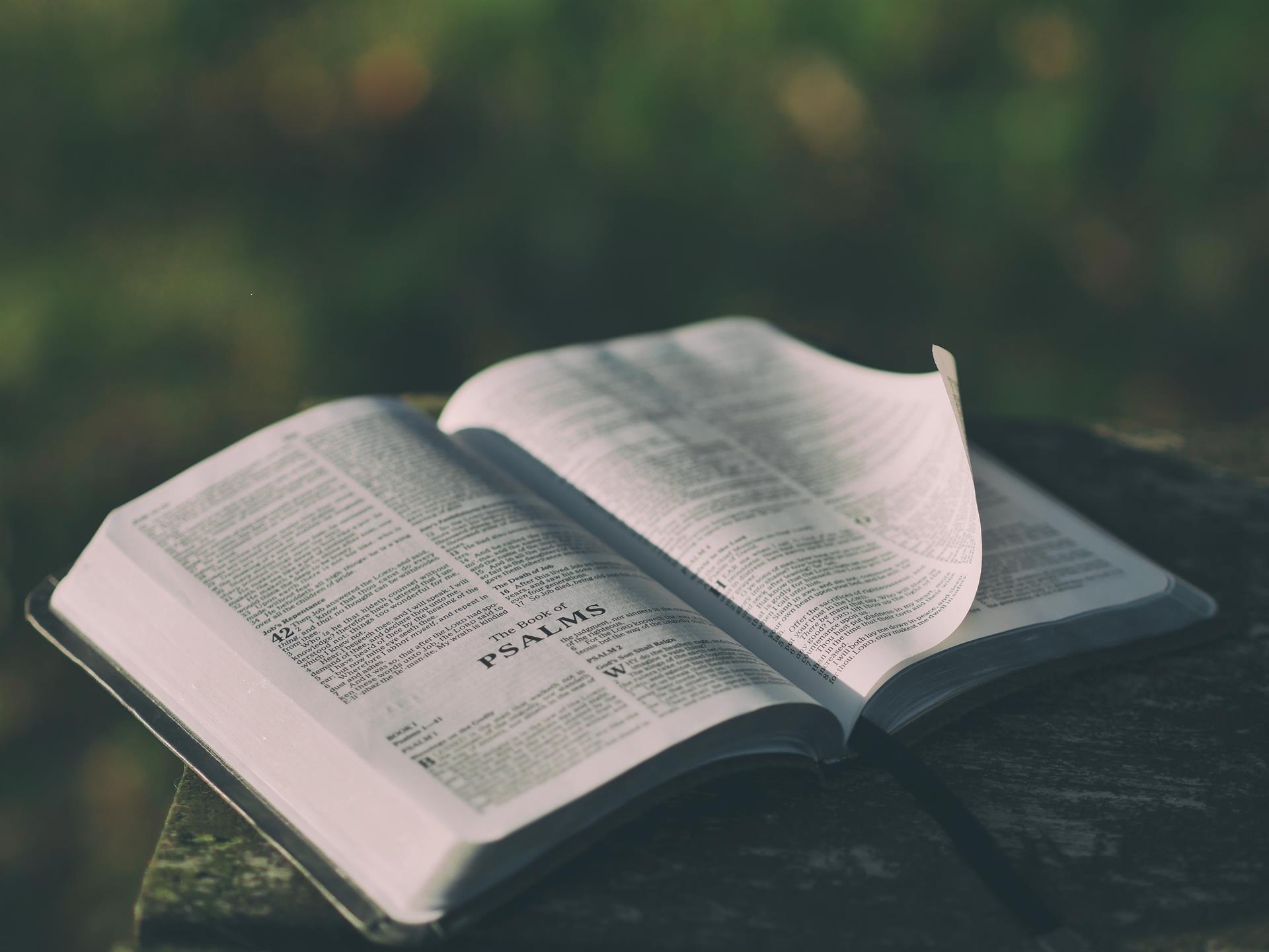 Prayer Style Bible